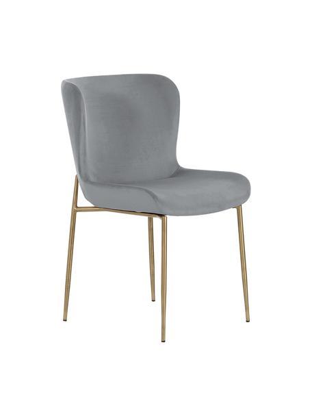 Samt-Polsterstuhl Tess, Bezug: Samt (Polyester) Der hoch, Beine: Metall, pulverbeschichtet, Samt Grau, Beine Gold, B 49 x T 64 cm