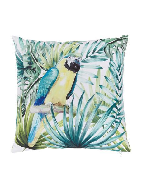 Zewnętrzna poduszka z wypełnieniem Parrot, Zielony, wielobarwny, S 45 x D 45 cm