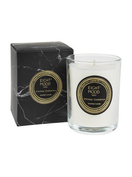 Candela profumata Black Marble (gardenia), Contenitore: vetro, Contenitore: trasparente  cera: bianco, Ø 9 x A 12 cm
