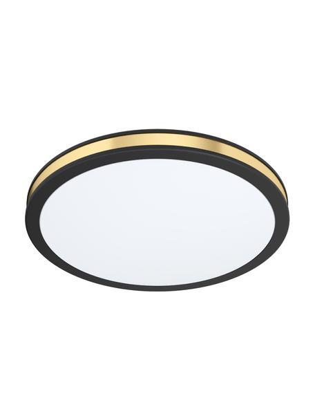Plafón LED Pescaito, Pantalla: plástico, Anclaje: metal pintado, Negro, dorado, Ø 28 x Al 7 cm