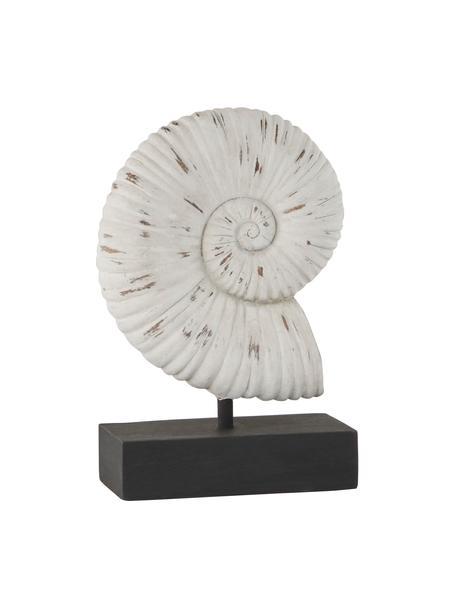 Deko-Objekt Serafina Shell, Kunststoff, Weiß, Schwarz, 15 x 24 cm