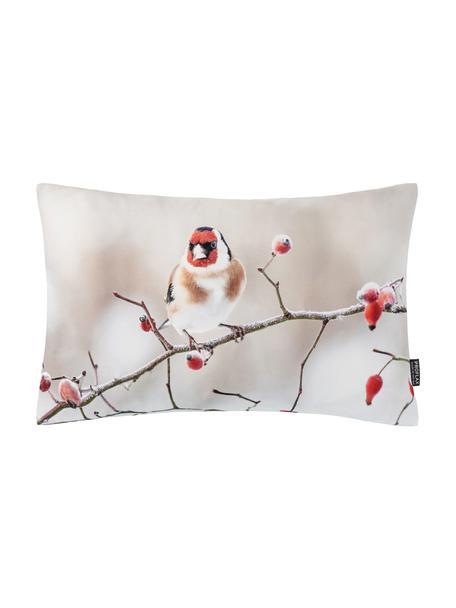 Poszewka na poduszkę Irmi, Bawełna, Odcienie beżowego, czerwony, S 30 x D 50 cm