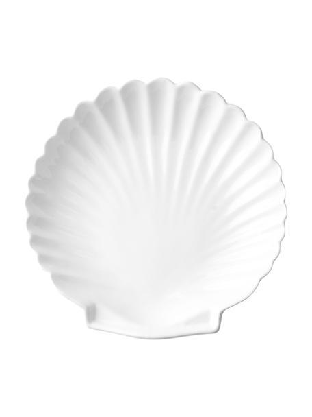 Teller Shell in Muschelform, 2 Stück, Keramik, Weiss, Ø 20 cm