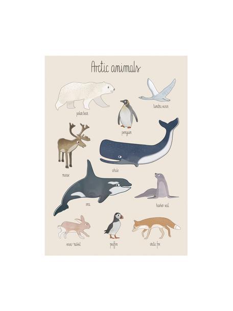Póster Arctic Animals, Papel recubierto, 250g/m², Multicolor, An 50 x Al 70 cm