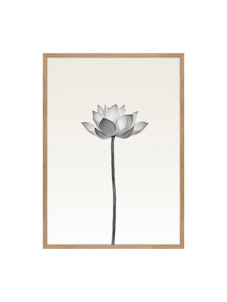 Stampa digitale incorniciata Lotus, Immagine: stampa digitale su carta , Cornice: Pannello di fibra ad alta, Nero, bianco, beige, Larg. 50 x Alt. 70 cm