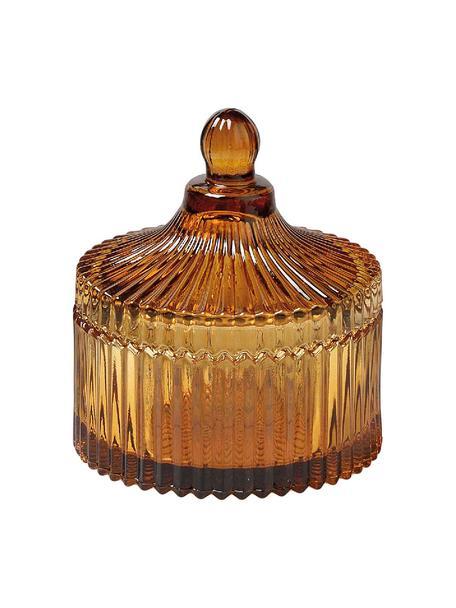 Contenitore in vetro Ionic, Vetro, Marrone, Ø 11 x Alt. 12 cm