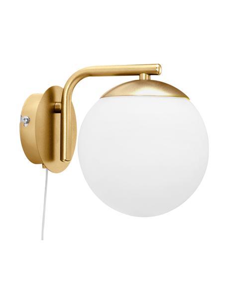 Applique con spina Grant, Base della lampada: ottone, Paralume: vetro opalino, Ottone, bianco, Larg. 15 x Alt. 18 cm