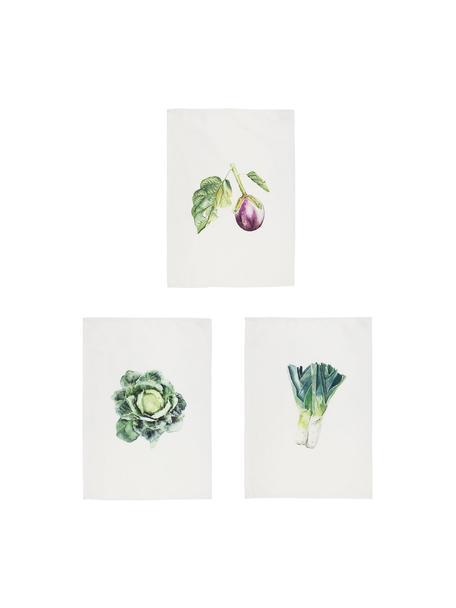 Set 3 strofinacci in cotone Primeur, 100% cotone, Bianco, verde, viola, Larg. 50 x Lung. 70 cm