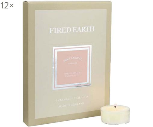 Teelichter Fired Earth, 12 Stück (Darjeeling & Rose), Wachs, Kunststoff, Beige, 16 x 2 cm
