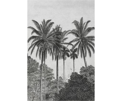 Fototapete Palms, Vlies, Grau, Schwarz, Weiß, 200 x 300 cm