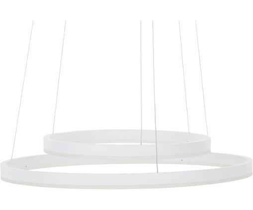 Lampada a sospensione a LED Conny, Baldacchino: metallo verniciato a polv, Paralume: metallo verniciato a polv, Bianco, opaco cavo: argento, Ø 60 x Alt. 140 cm