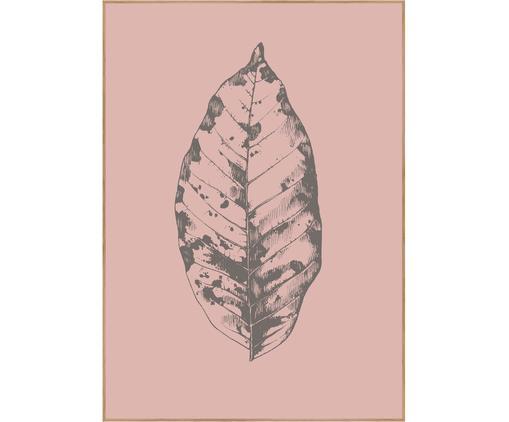 Stampa digitale incorniciata Botanica, Immagine: stampa digitale su carta , Cornice: Pannello di fibra ad alta, Rosa, grigio, Larg. 30 x Alt. 40 cm