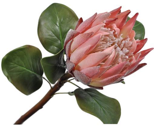Fiore artificiale cespugli di zucchero Zenia, Poliestere, PCV, metallo, Verde, rosa, Lung. 60 cm