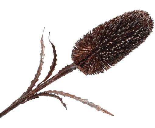 Fleur artificielle Protea Zena, Brun, couleur argentée