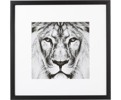 Gerahmter Digitaldruck Lion Close Up, Bild: Digitaldruck, Rahmen: Kunststoffrahmen mit Glas, Schwarz,Weiß, 40 x 40 cm