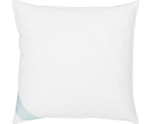 Daunen-Kopfkissen Premium, mittel, Hülle: 100% Baumwolle, Mako-Köpe, Weiß mit türkiser Satinbiese, 80 x 80 cm