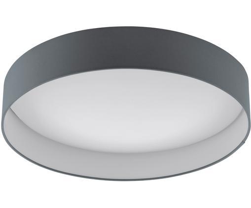 Plafoniera a LED Paloma, Antracite, Ø 50 x Alt. 11 cm