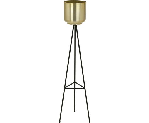 Portavaso Loki, Struttura: metallo verniciato, Nero, ottone, Larg. 23 x Alt. 85 cm