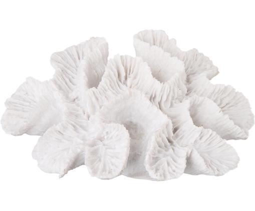 Oggetto decorativo Korall, Poliresina, Bianco, L 16 x A 5 cm