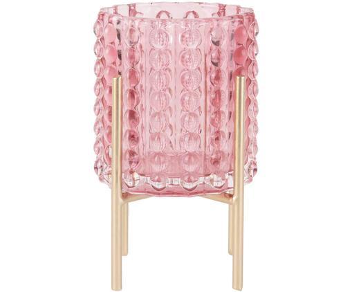 Portavaso Stilt, Portavasi: vetro, Struttura: metallo, rivestito, Rosa, ottonato, Ø 9 x Alt. 15 cm