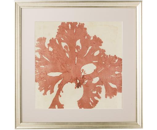 Gerahmter Digitaldruck Seadream II, Bild: Digitaldruck, Rahmen: Kunststoff, Front: Glas, Bild: Lachsfarben, Beige<br>Rahmen: Goldfarben, 50 x 50 cm