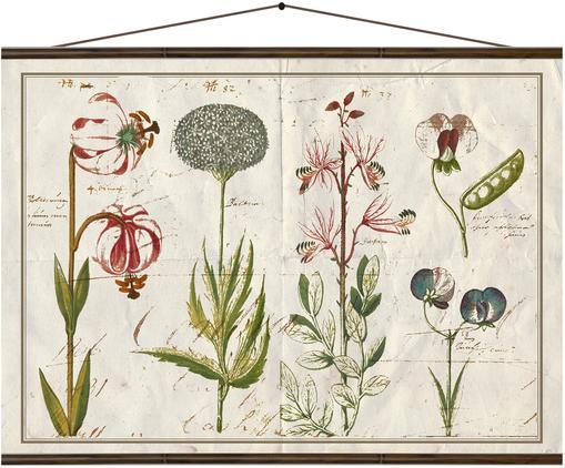 Stampa digitale su tela Botanic, Stampa digitale su tela, Multicolore, Larg. 70 x Alt. 50 cm