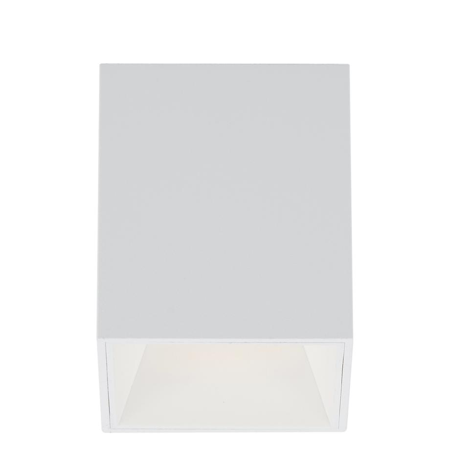 LED-Deckenspot Marty, Lampenschirm: Metall, pulverbeschichtet, Weiss, matt, 10 x 12 cm