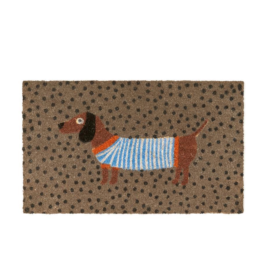 Fussmatte Sausage Dog, Oberseite: Kokosfaser, Unterseite: Kunststoff (PVC), Mehrfarbig, 45 x 75 cm