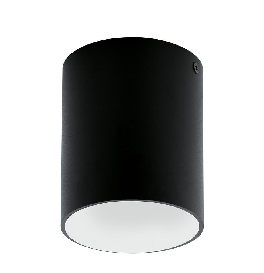 LED-Deckenspot Marty, Metall, pulverbeschichtet, Schwarz,Weiss, Ø 10 x H 12 cm