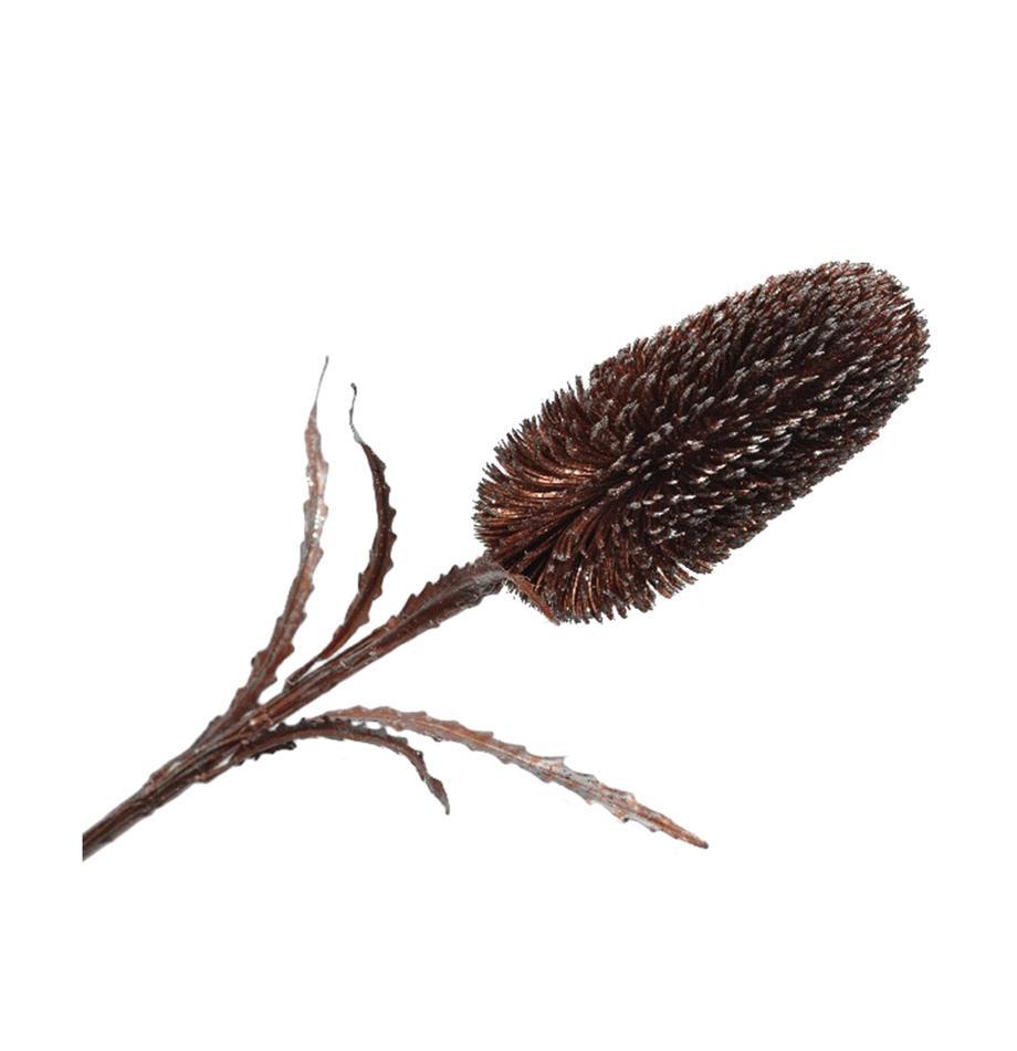 Kunstblume Zuckerbüsche, Polyester, Polyethylen, Metall, Braun, Silberfarben, L 71 cm