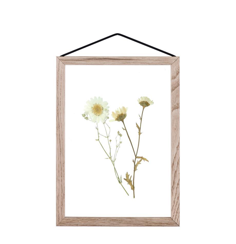 Bilderrahmen Frame, Rahmen: Eichenholz, unbehandelt, Rahmen: Eiche<br>Aufhängung: Schwarz<br>Front und Rückseite: Transparent, 17 x 23 cm