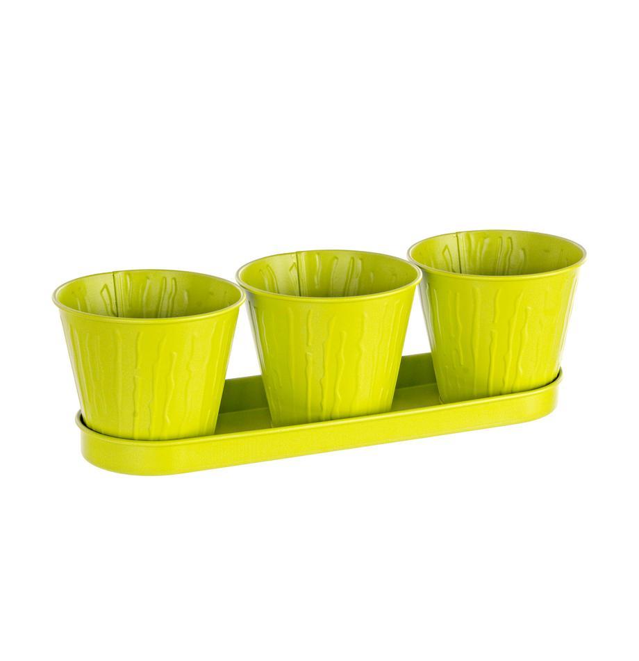 Set portavasi Bark 4 pz, Metallo rivestito, Verde lime, Set in varie misure