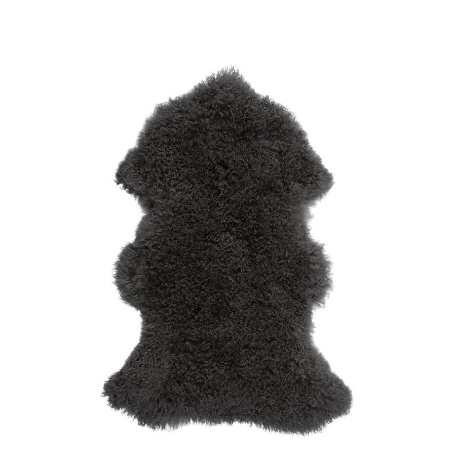 Langharige schapenvacht Ella, gekruld, Bovenzijde: Mongoolse schapenvacht, Onderzijde: leer, Grijs, 50 x 80 cm