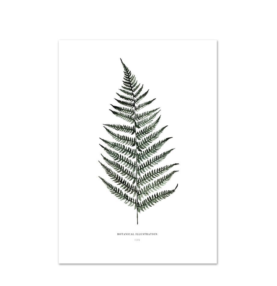 Póster Fern, Impresión digital sobre papel, 200g/m², Blanco, verde, An 21 x Al 30 cm