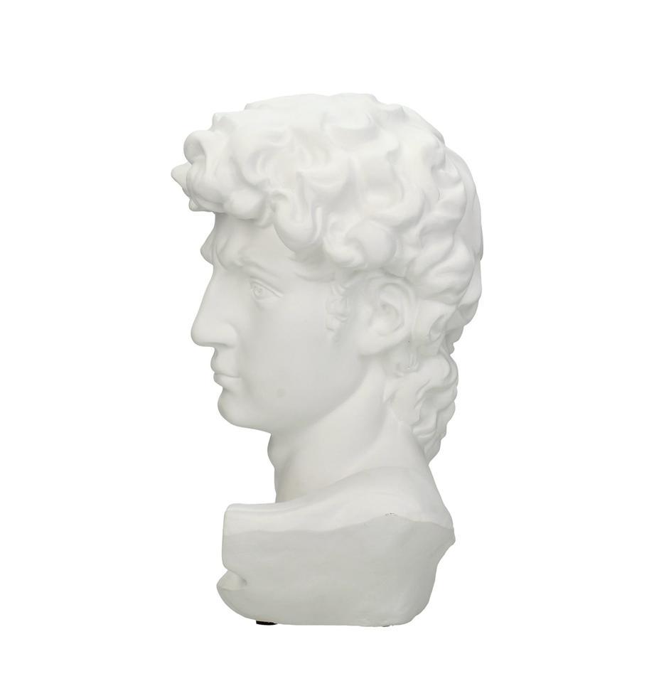 Dekoracja David, Poliresing, Biały, S 17 x W 30 cm
