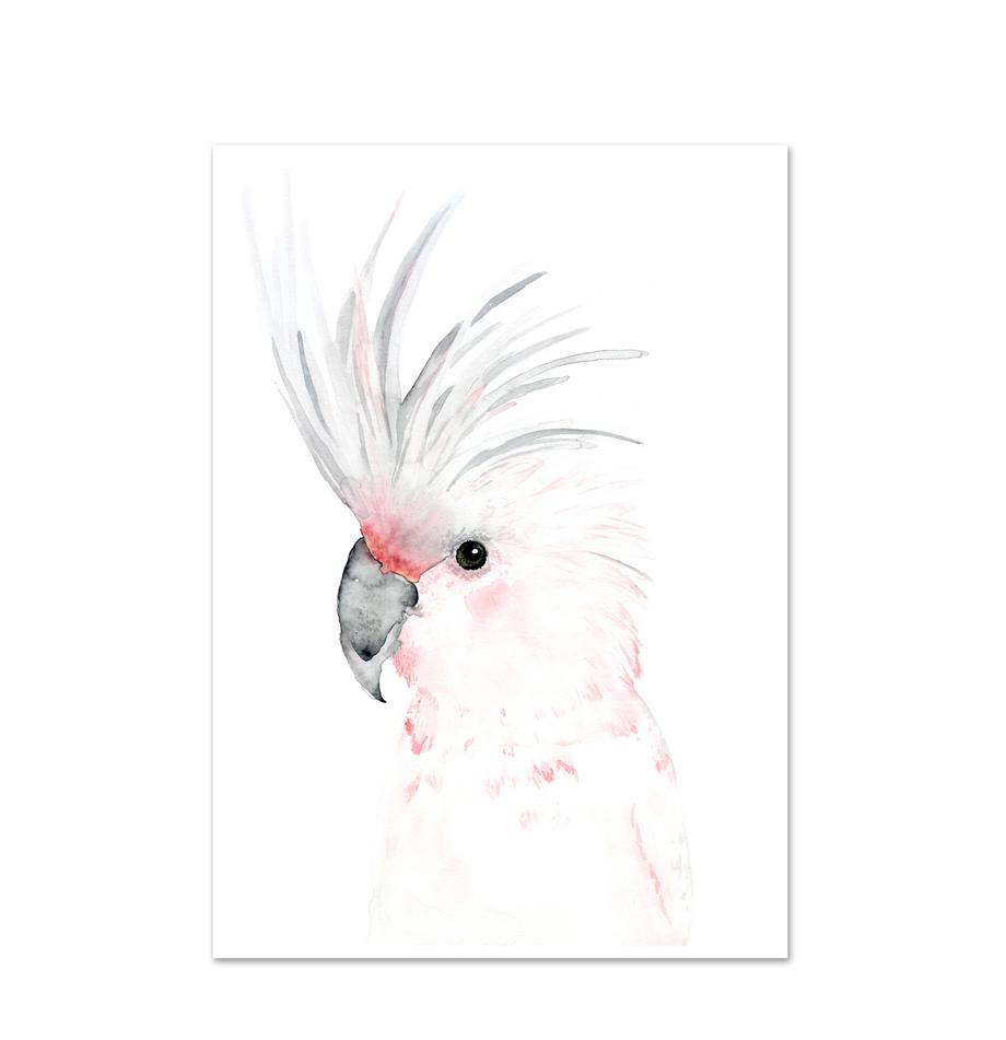 Poster Kakadu, Stampa digitale su carta, 200 g/m², Bianco, grigio, rosa, Larg. 21 x Alt. 30 cm