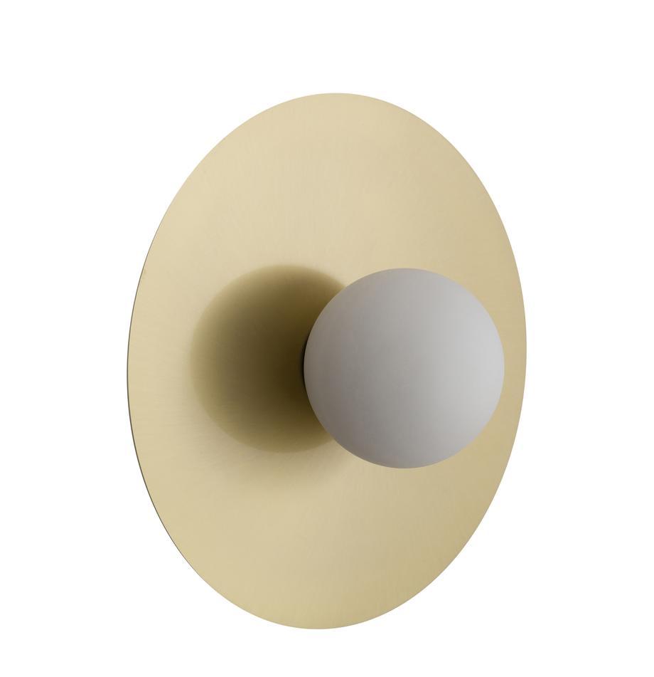 Lampada da parete e soffitto a LED Starling, Paralume: vetro, Baldacchino: ottonato opaco Paralume: bianco, Ø 33 cm