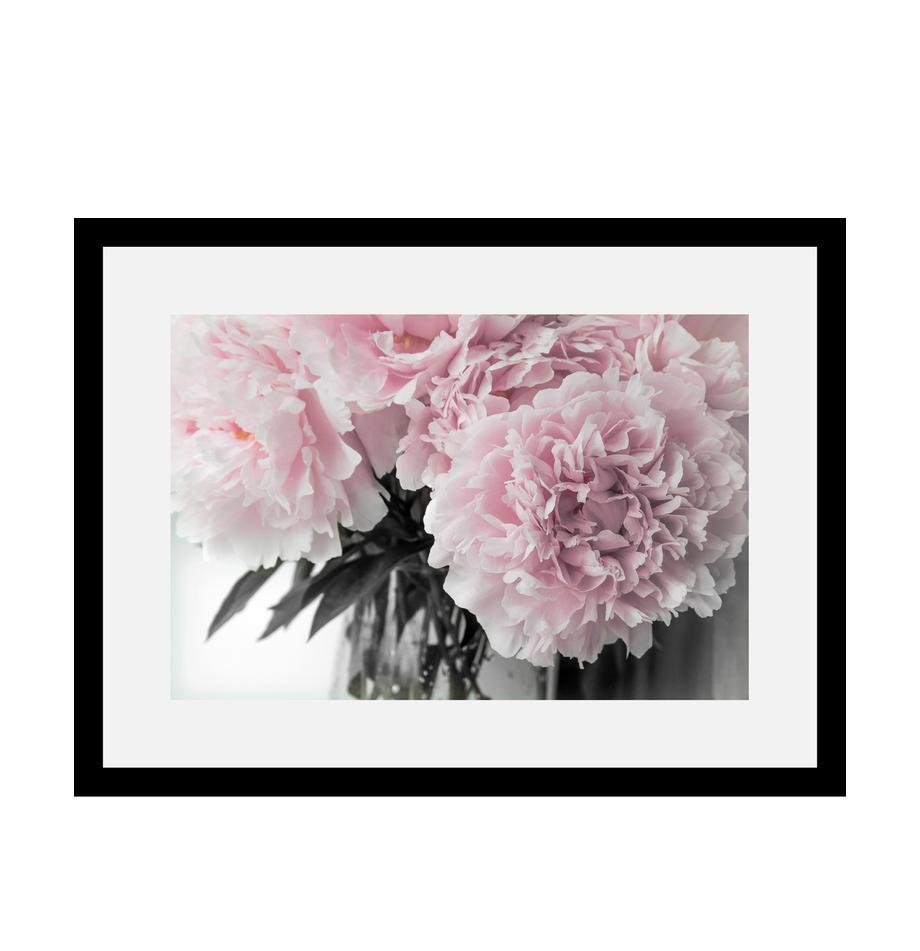 Gerahmter Digitaldruck Pink Flowers, Bild: Digitaldruck, Rahmen: Echtholzrahmen, Front: Acrylglas, Rückseite: Mitteldichte Holzfaserpla, Bild: Rosatöne, Weiß, Dunkelgrün<br>Rahmen: Schwarz, 40 x 30 cm