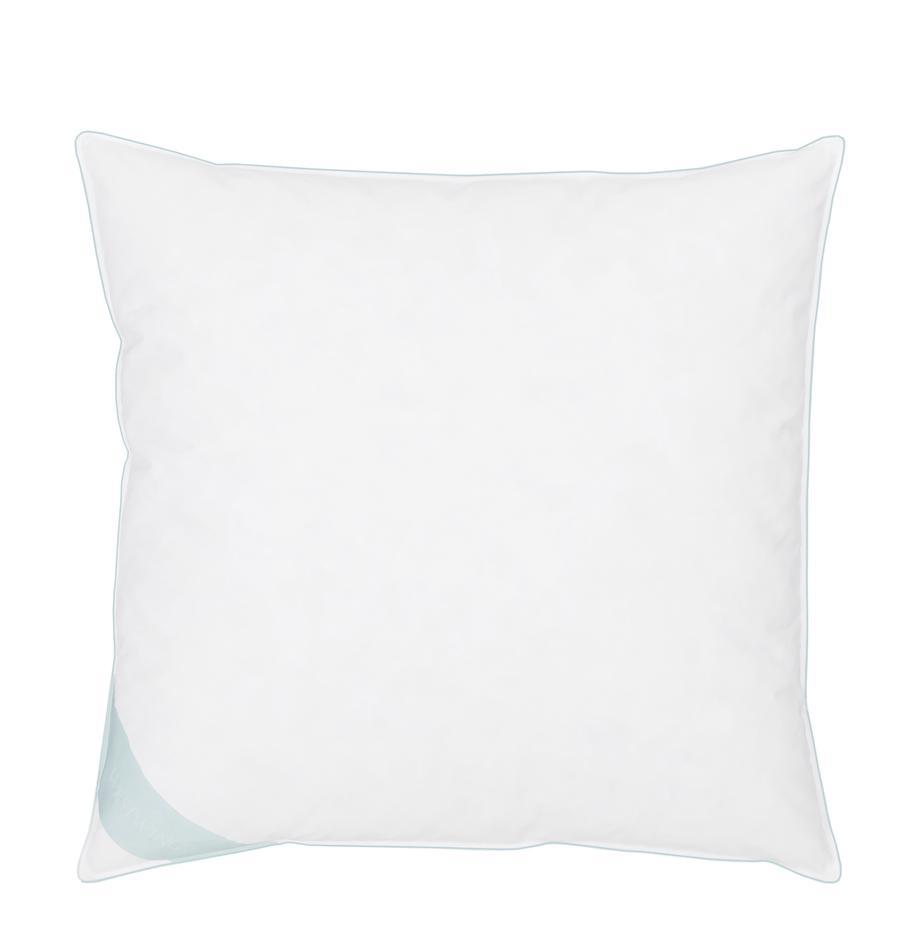 Feder-Kopfkissen Comfort, fest, Hülle: 100% Baumwolle, Mako-Köpe, Weiß mit türkiser Satinbiese, 80 x 80 cm