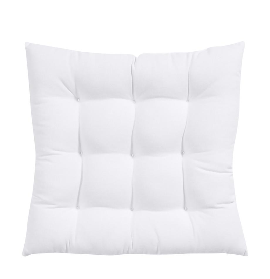 Cojín de asiento Ava, Funda: 100%algodón, Blanco, An 40 x L 40 cm