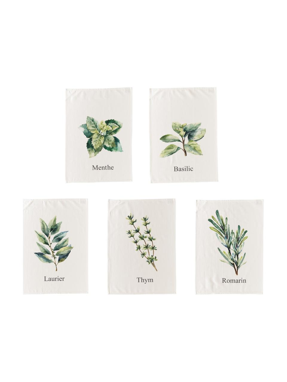 Set canovacci con motivi di erbe Aroma, 5 pz., Cotone, Bianco latteo, verde, Lung. 70 x Larg. 50 cm