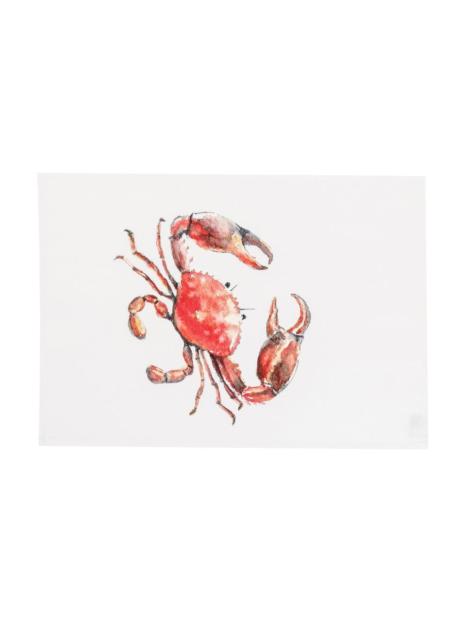 Set 5 strofinacci in cotone Sable, Cotone, Multicolore, Larg. 50 x Lung. 70 cm