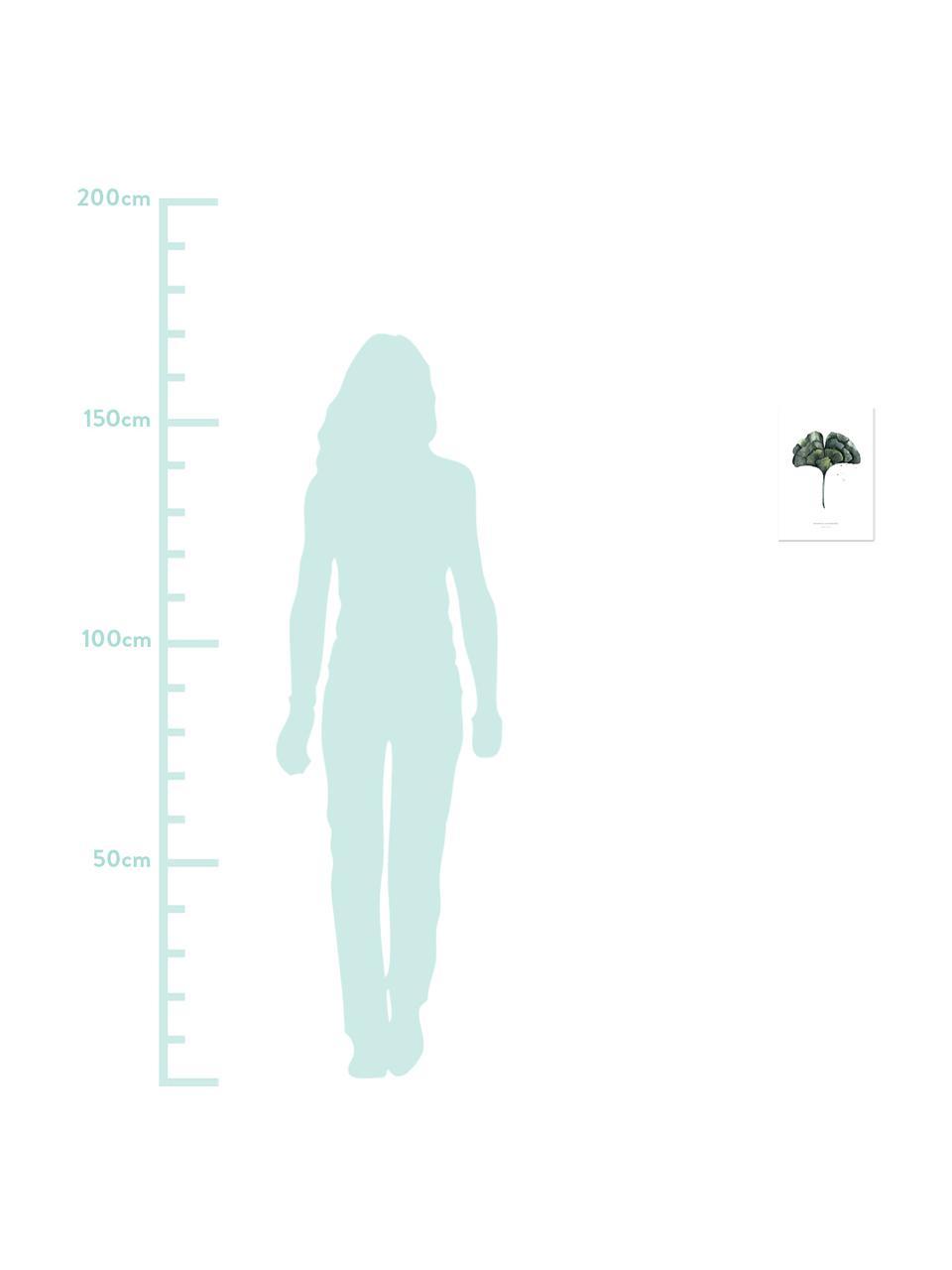 Poster Ginko, Digitaldruck auf Papier, 200 g/m², Weiß, Grün, 21 x 30 cm