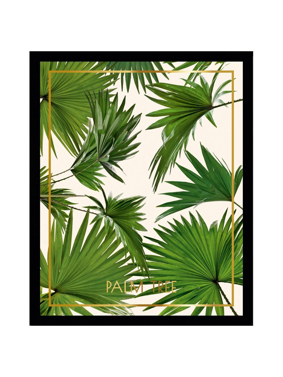 Impression numérique encadrée Palm Tree I, Multicolore