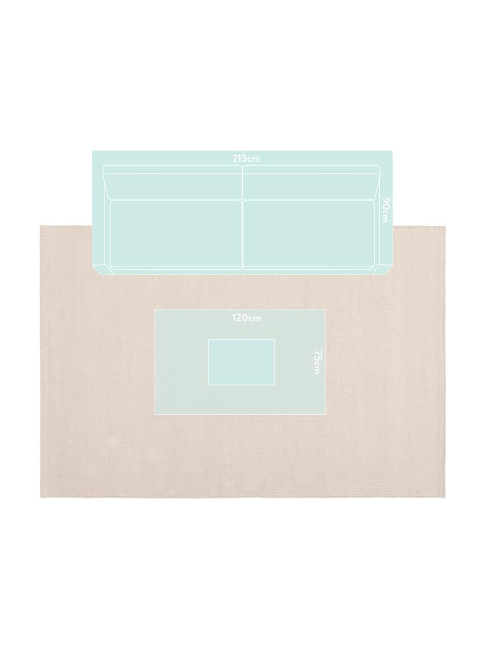 Tappeto in cotone tessuto a mano Agneta, 100% cotone, Beige, Larg. 200 x Lung. 300 cm (taglia L)