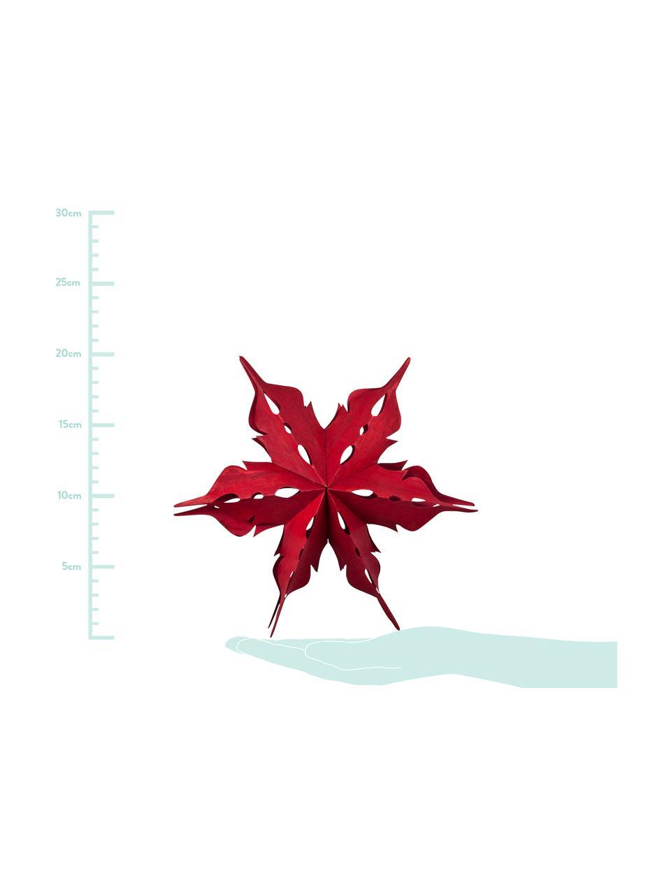 Deko-Objekte Veneer, 2 Stück, Furnierholz, Rot, Ø 20 x T 5 cm