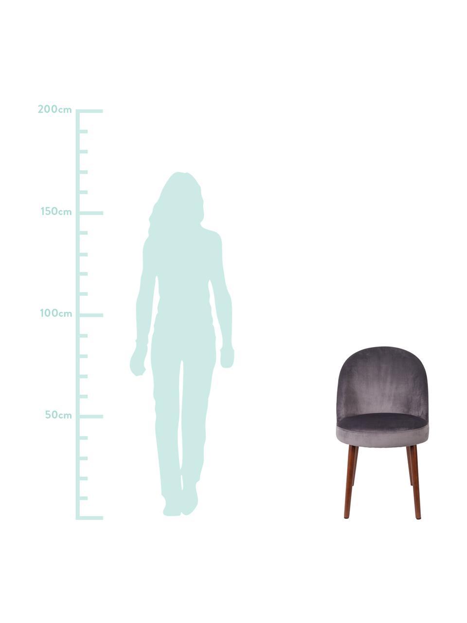Samt-Polsterstuhl Barbara, Bezug: 100% Polyestersamt, Beine: Buchenholz, lackiert, Bezug: Grau  Beine: Walnussbraun, 51 x 85 cm