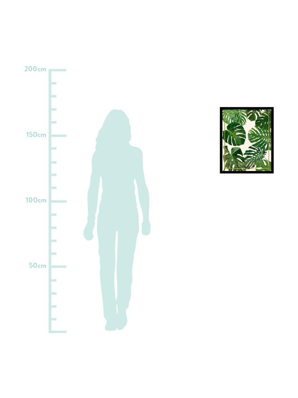 Gerahmter Digitaldruck Palm Tree II, Bild: Digitaldruck, Rahmen: Kunststoffrahmen mit Glas, Mehrfarbig, 40 x 50 cm