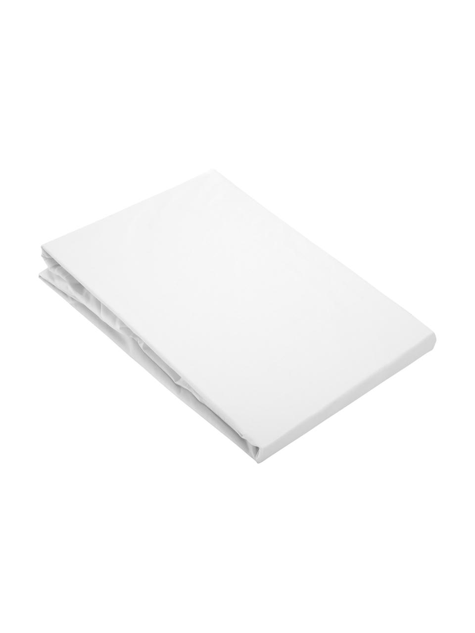 Lenzuolo con angoli in percalle Elsie, Tessuto: percalle, Bianco, Larg. 180 x Lung. 200 cm
