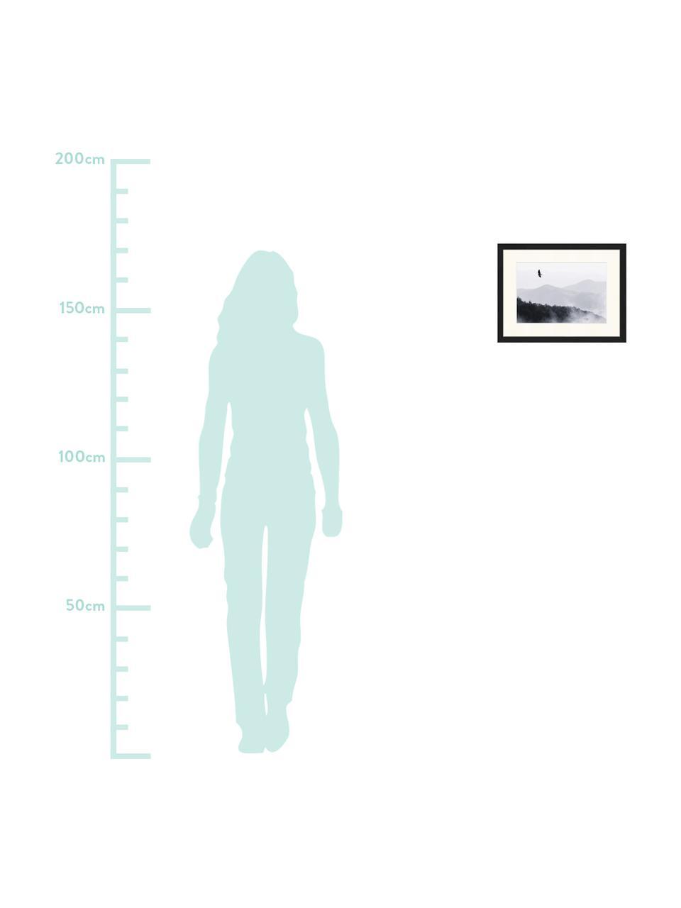 Ingelijste digitale print Bird Flying Over Misty Hills, Afbeelding: digitale print op papier,, Lijst: gelakt hout, Zwart, wit, 43 x 33 cm